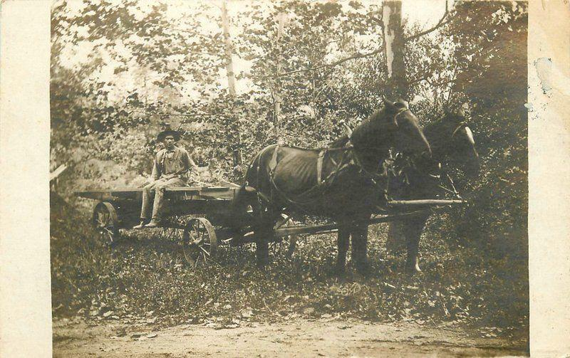Agriculture Farming Flatbed Wagon C-1910 Occupation RPPC real photo 5708