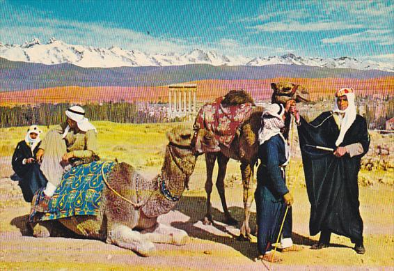 Lebanon General View Of Baalbeck and Camel Drivers