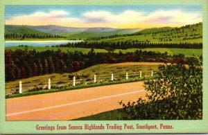 Pennsylvania Smethport Greetings From Seneca Highlands Trading Post