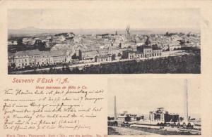 Souvenir d'Esch/Alzette , Haut fournaux de Metz & Co. Luxembourg ,  PU-1900