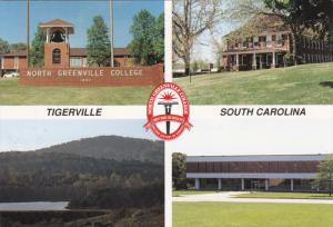 TIGERVILLE, South Carolina, 1950-1970's; Multiple Views,North Greenville Coll...