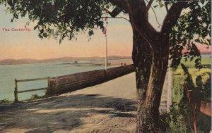 BERMUDA, 1900-1910's; The Causeway