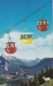 The Cablecar Lift on Mt. Norquay with Ram, Canadian Rockies, Banff, Alberta, ...