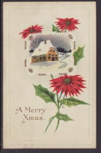 A Merry Christmas,Poinsettia,House Postcard