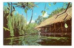 The Willows, Honolulu, Hawaii, 40-60s