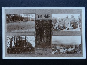 BIRDLIP 5 Image Multiview inc THE ROYAL GEORGE HOTEL & GROUNDS Old RP Postcard