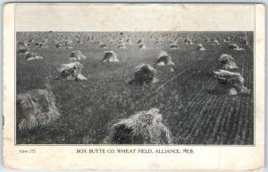 Alliance, Nebraska Postcard BOX BUTTE COUNTY WHEAT FIELD Farming c1910s