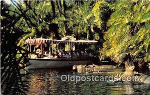 Jungle Cruise Walt Disney World, FL, USA Postcard Post Card Walt Disney World...