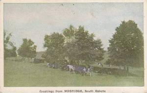 South Dakota Mobridge Greetings From 1924