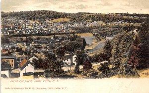 Bird's Eye View Little Falls, New York Postcard