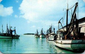 Florida Key West Shrimp Fleet and Docks