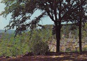 Arkansas little Rock This View