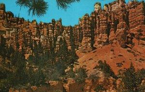 Bryce Canyon Nat'l Park, UT, Pink Cliffs, Chrome Vintage Postcard g9224