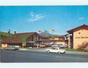 Unused Pre-1980 OLD CARS & OLIVE TREE INN MOTEL San Luis Obispo CA s2838