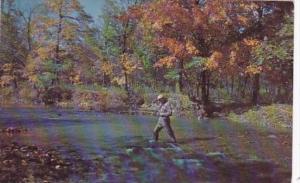 Virginia Shenandoah Valley Fishing In A Mountain Stream