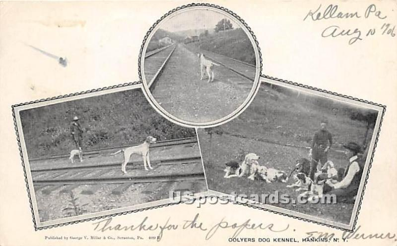 Colyers Dog Kennel Hankins NY 1906
