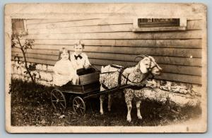 RPPC Boy w/Bow Tie & Sister Next to House, Being Pulled in Goat Cart~1920s PC