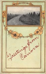 Canova South Dakota~Embossed, Gold Leaf Greetings~Strand of Flowers 1911 PC
