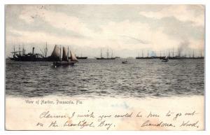 1905 View of the Harbor, Pensacola, FL Postcard