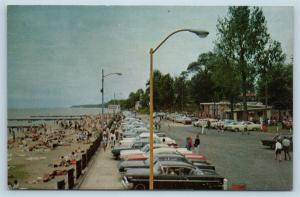 Postcard MD Chesapeake Beach View in Chesapeake Beach Park c1960s Old Cars S6