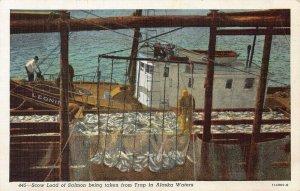 Load of Salmon Taken From a Trap in Alaskan Waters, early Alaska postcard