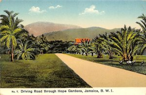 Jamaica, Jamaique Post card Old Vintage Antique Postcard Driving Road through...