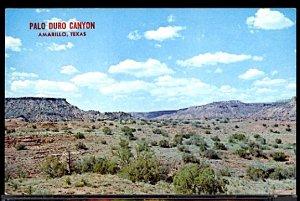 USA Palo Duro Canyon Amarillo Texas