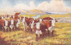 Flowing Gold Of The Western Range By Cowboy Artist L H Dude Larsen 1946