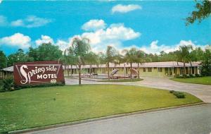 Silver Springs Florida~Spring Side Motel~Huge Sign~Outdoor Pool~1960s Postcard