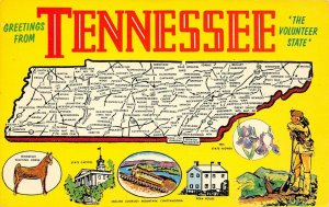 LP25    Tennessee Postcard  State Map