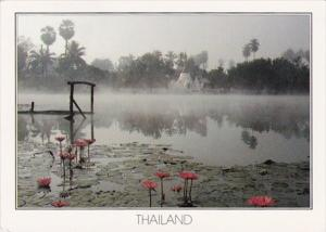 Thailand Buddhist Temple and Lotus Pond