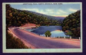 NY Greetings from NORTH BRANCH NEW YORK Linen Postcard