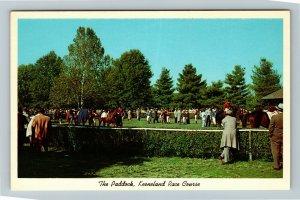 Lexington KY-Kentucky, The Paddock, Keeneland Race Course, Chrome Postcard