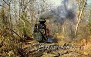 Pine Creek Railroad  Monmouth County NJ Unused