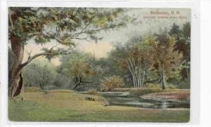 Intervale Looking Down River, Rochester, New Hampshire, 1900-1910s