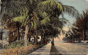 12th Street Looking Toward the Bay  Miami FL