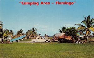 Everglades National Park Florida~Flamingo Camping Area~Tents~Campers~1950s Car