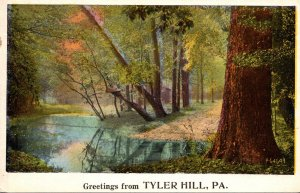 Pennsylvania Greetings From Tyler Hill