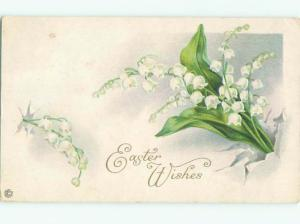 Divided-Back BEAUTIFUL FLOWERS SCENE Great Postcard AA2354