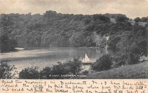R. Dart, Sharpham Woods Lake Forest Lac Panorama 1903