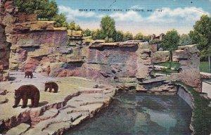 Bear Pit Forest Park Saint Louis Missouri 1940
