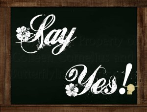 Set of 6  Postcards Blackboard Greetings - Say Yes- Simple Expression