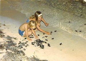 Grand Cayman Islands Post card Old Vintage Antique Postcard Sea Turtles Relea...