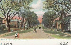 NEW HAVEN, Connecticut, 1905 ; Hillhouse ave