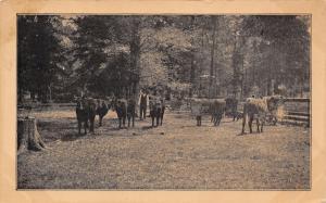 Manchester IA Illinois Central RR Office Ad~Kentucky~LA-TN-MS Livestock c1910