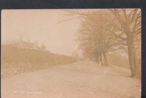 Dorset Postcard - The Park, Shaftesbury     DC2508