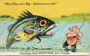Westview BC Here They Are Big Fishing Fish Exaggeration Comic c1953 Postcard F5