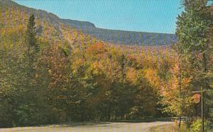 Vermont Stowe Mount Mansfield Forest Park