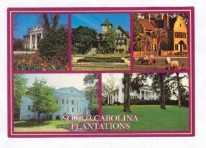 Plantations, South Carolina, 60-70s