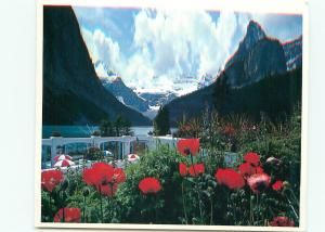 Postcard Lake Louise From Tulip Garden Banff National Park Rockies Canad  #3782A